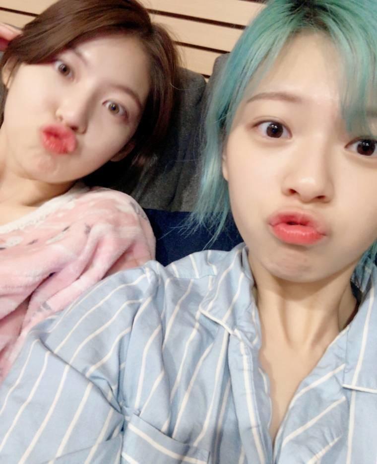 공승연 인스타그램 feat 정연,멍뭉이 (8).jpeg