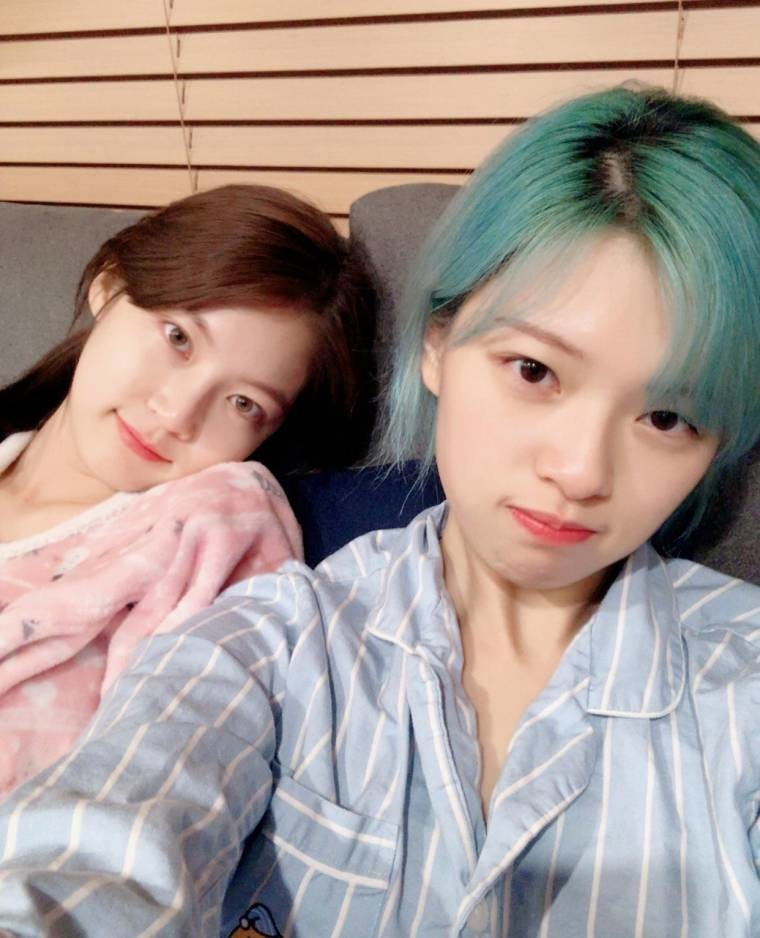 공승연 인스타그램 feat 정연,멍뭉이 (4).jpeg